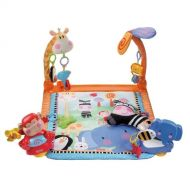 Fisher-Price Discover n Grow Open Play Musical Gym